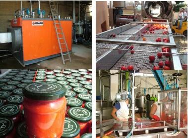 Tvornica za preradu rajčice 00